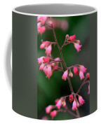 Pink Heuchera Flower 1 Coffee Mug