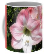 Pink Hippeastrum 01 Coffee Mug