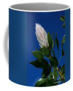 Pink King Protea Kula Maui Hawaii Coffee Mug