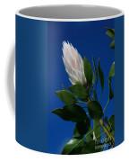 Pink King Protea Kula Maui Hawaii Coffee Mug