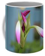 Pink Lily Bud Coffee Mug