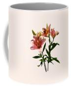 Pink Lily Trio Coffee Mug
