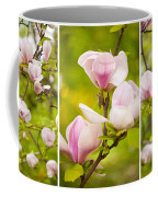 Pink Magnolia Triptych Coffee Mug