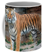 Pink Nosed Tiger Coffee Mug