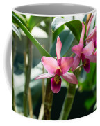 Pink Orchids - Exotic Tropical Glow Coffee Mug