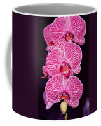 Pink Orchids Coffee Mug