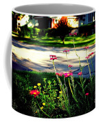 Pink Petals In The Sunlight Coffee Mug