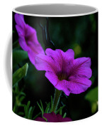 Pink Petunia, Dusk, Hunter Hill, Hagerstown, Maryland, July 25,  Coffee Mug
