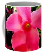 Pink Pinwheel Coffee Mug