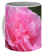 Pink Rose - 2 Coffee Mug