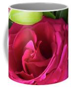 Pink Rose And Bud Close-up Coffee Mug