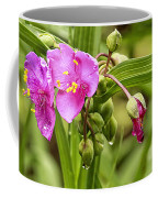 Pink Spiderwort Drip Drops Coffee Mug