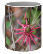 Pink Spikes Coffee Mug