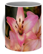 Pink Spring Lilly Coffee Mug