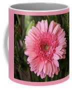 Pink Stunner Coffee Mug