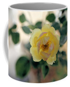 Pink Tipped Yellow Rose Coffee Mug