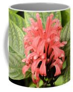 Pink Trendles Coffee Mug