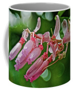 Pink Tropical Flower In Huntington Botanical Garden In San Marino-california Coffee Mug