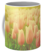 Pink Tulip Flowers In The Garden On Sunny Day In Spring Coffee Mug