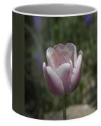 Pink Tulip Squared Coffee Mug