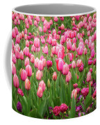 Pink Tulips At Floriade In Canberra, Australia Coffee Mug