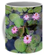 Pink Water Lilies Coffee Mug