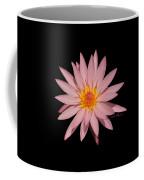 Pink Water Lily Transparent Coffee Mug