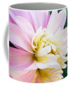 Pink White Dahlia Flower Soft Pastels Art Print Canvas Baslee Troutman Coffee Mug