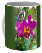 Pinkishyellow Orchid Coffee Mug