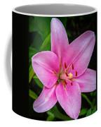 Pinkly Yours Coffee Mug