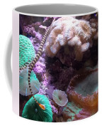 Pipe Fish And Sea Anemone  Coffee Mug
