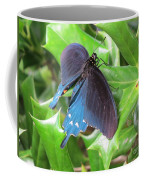 Pipevine Swallowtail Coffee Mug