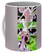 Pisgah Versicolor Coffee Mug