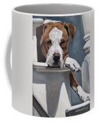 Pitbull Stare Coffee Mug
