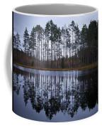 Pitkajarvi 4 Coffee Mug