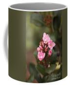 Pittosporum Pink 2 Coffee Mug