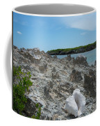 Plant And Shell On A Dominican Shore Coffee Mug