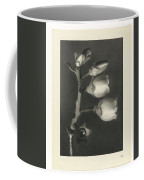 Plant Studies, 1928, Nature Series, By Karl Blossfeldt  Coffee Mug