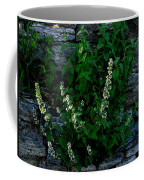 Plants Grow Anywhere Coffee Mug
