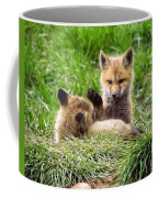 Play With Me Coffee Mug