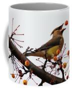 Playing Catch Coffee Mug