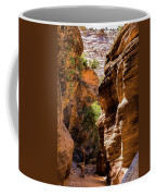 Playing The Slots In Zion Coffee Mug