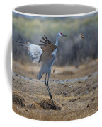 Playing Toss Coffee Mug