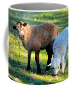 Time For Play Coffee Mug