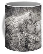 Playtime In Africa- Cheetah Cubs Acinonyx Jubatus Coffee Mug