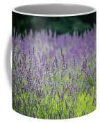 Pleasant Dreams Coffee Mug