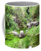 Pleasant Nature Coffee Mug