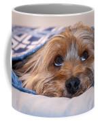 Please Forgive Me Coffee Mug