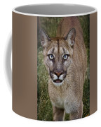 Please Stroke Me Coffee Mug
