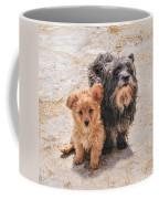 Please Take Me Home Coffee Mug